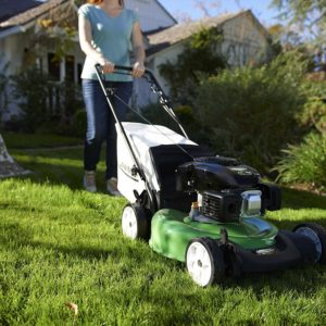 Lawn-Boy 17732 Self-propelled Gas Mower