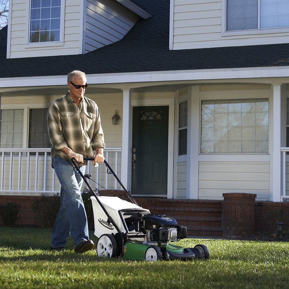 Lawn-Boy 10730 gas push mower review